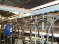 Close up of Dairy Barn with Festooning for Milking & Disinfection