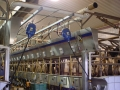 Dairy Application5