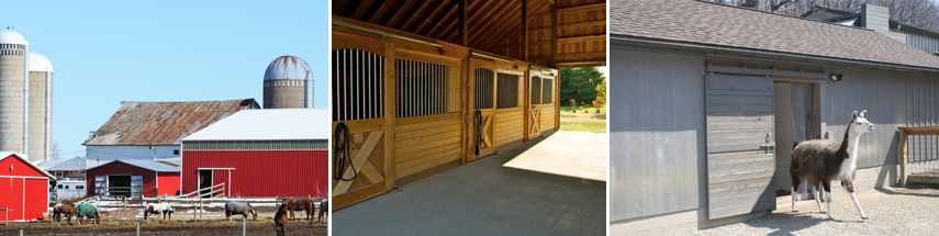 Barns, Stables, and Equine