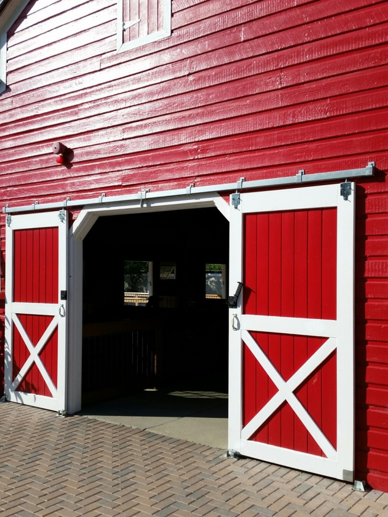 Rustic Design - Red Barn Door Style